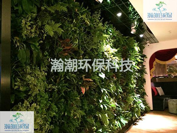 廣州市區莊立交某餐廳綠墻.jpg